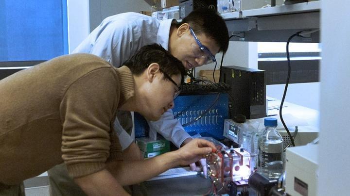 Princeton Univ Hydrogen From Wastewater