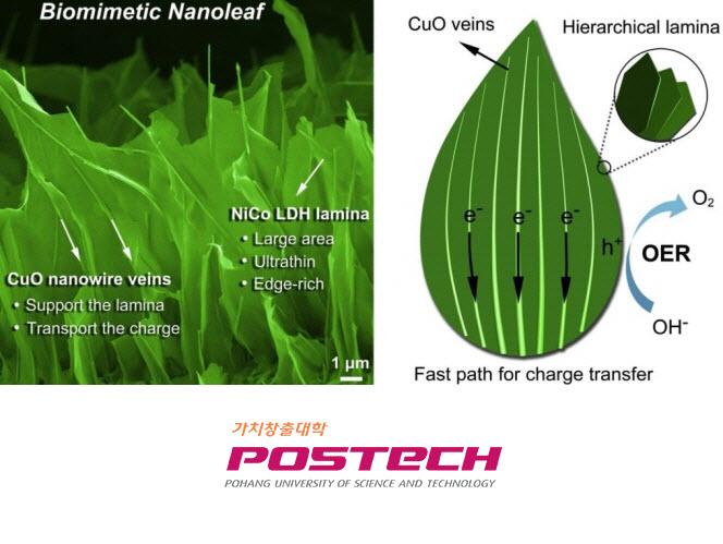 nano leaf