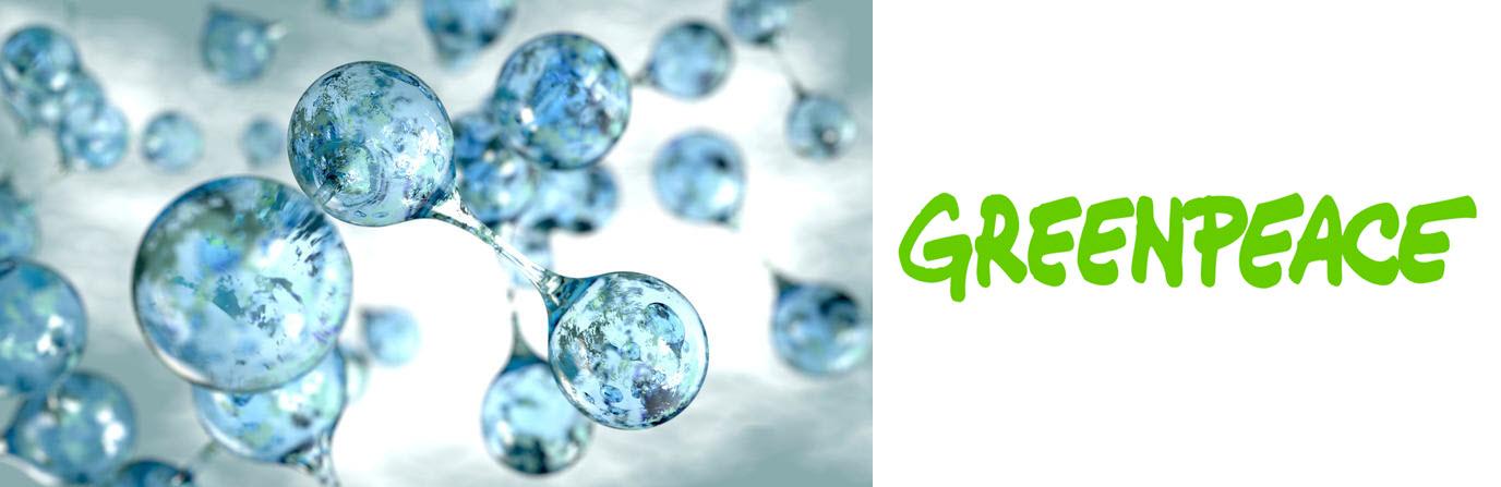 GreenPeace Energy Study