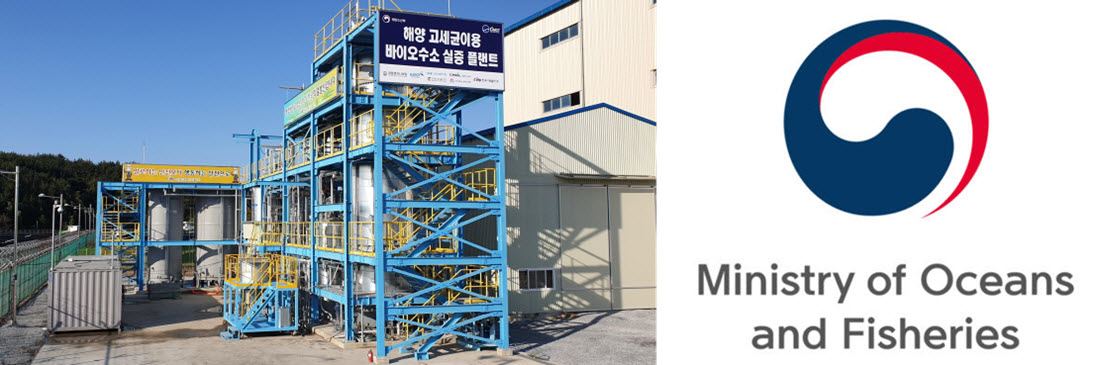 Korea Builds Hydrogen Plant that Converts Carbon Monoxide (CO) to Hydrogen Using Marine Microorganisms - FuelCellsWorks
