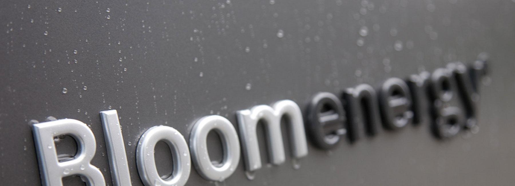 bloom logo banner lower