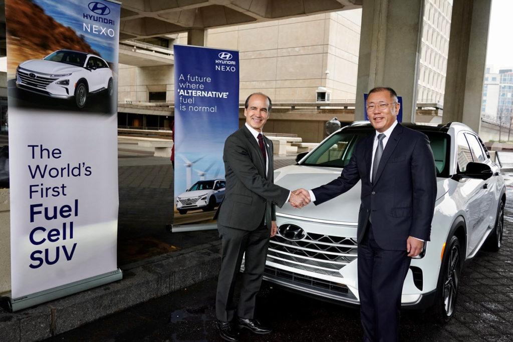 Hyundai DOE Insert