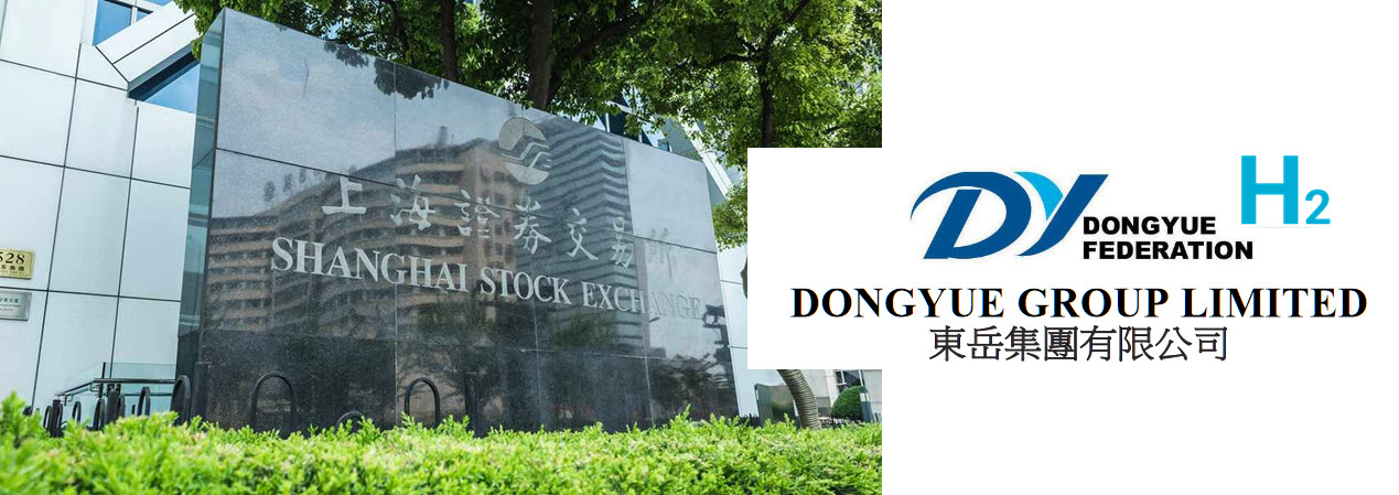DONGYUE GROUP LIMITED