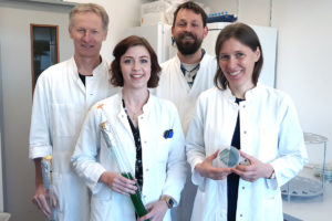Kiel research team investigates how cyanobacteria can be transformed into hydrogen factories small