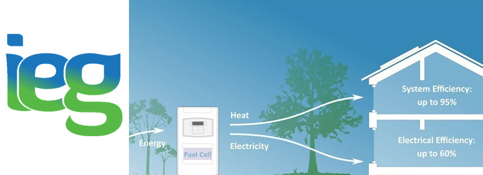 IEG Fuel Cells for Home