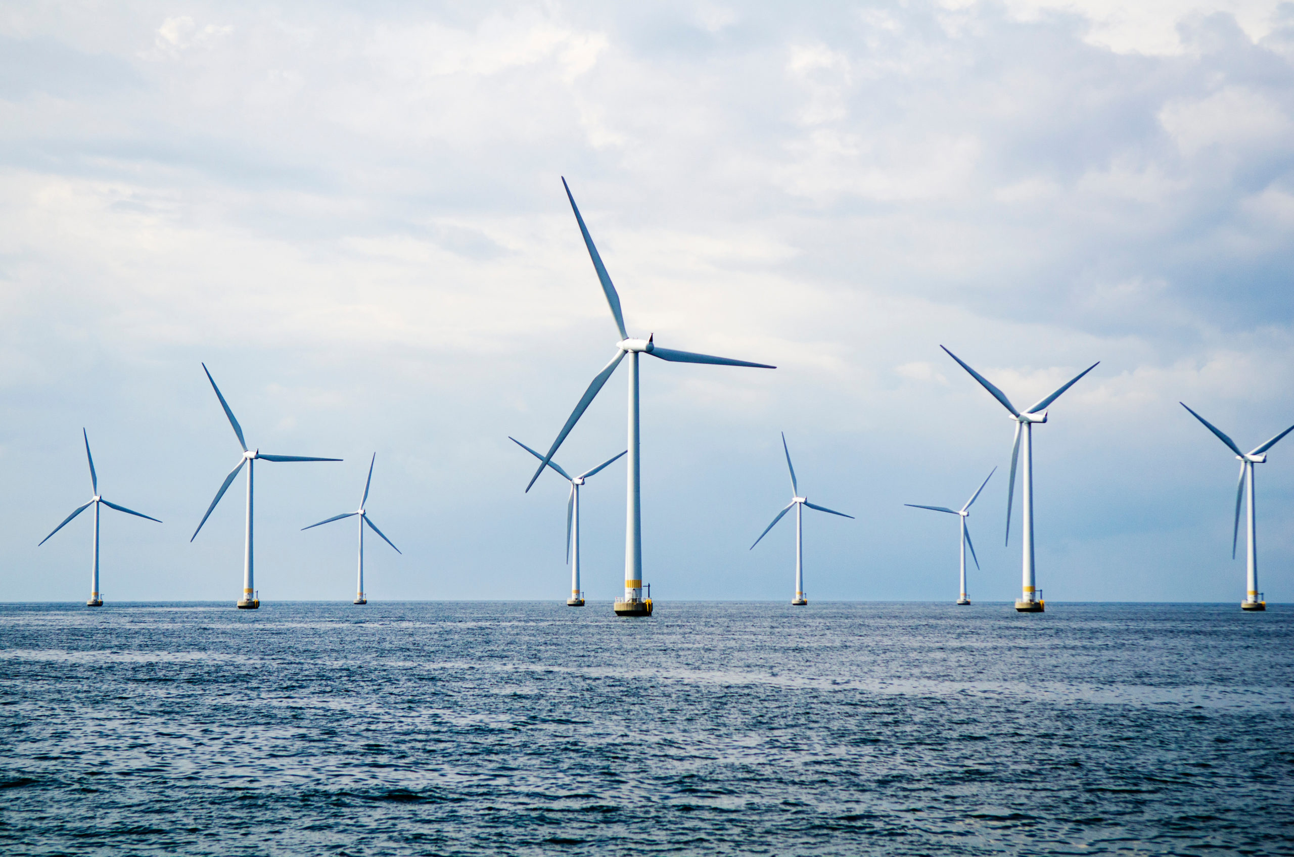 Wind Projects Shutterstock 1 scaled
