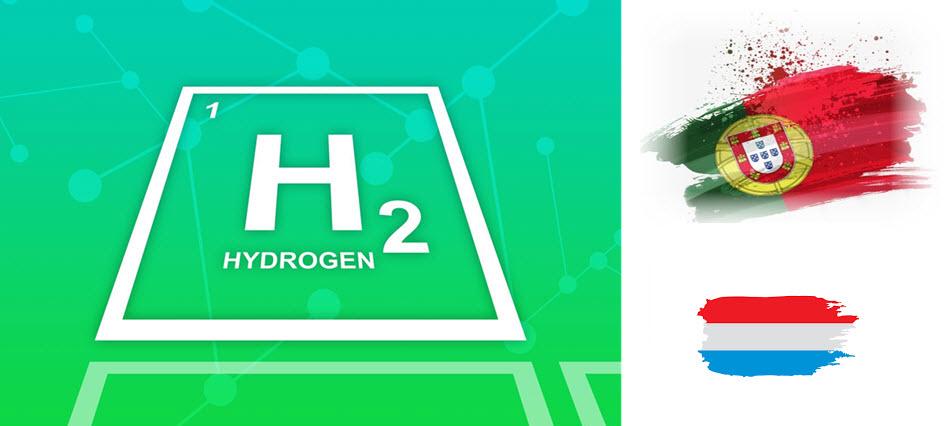 Green Hydrogen Portugal Netherlands
