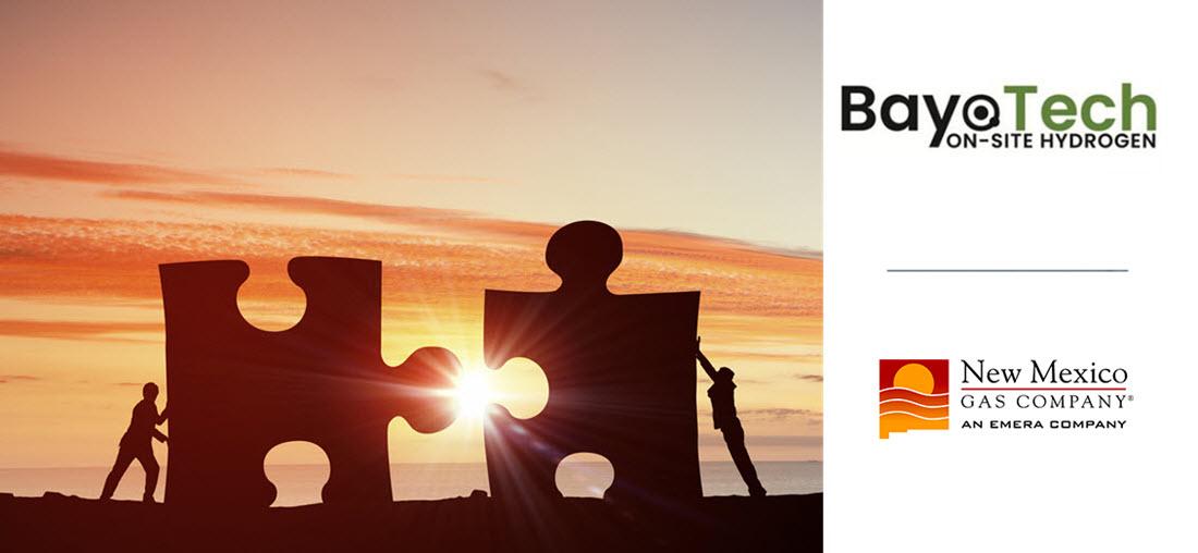 Bayotech and NMGC Partnership
