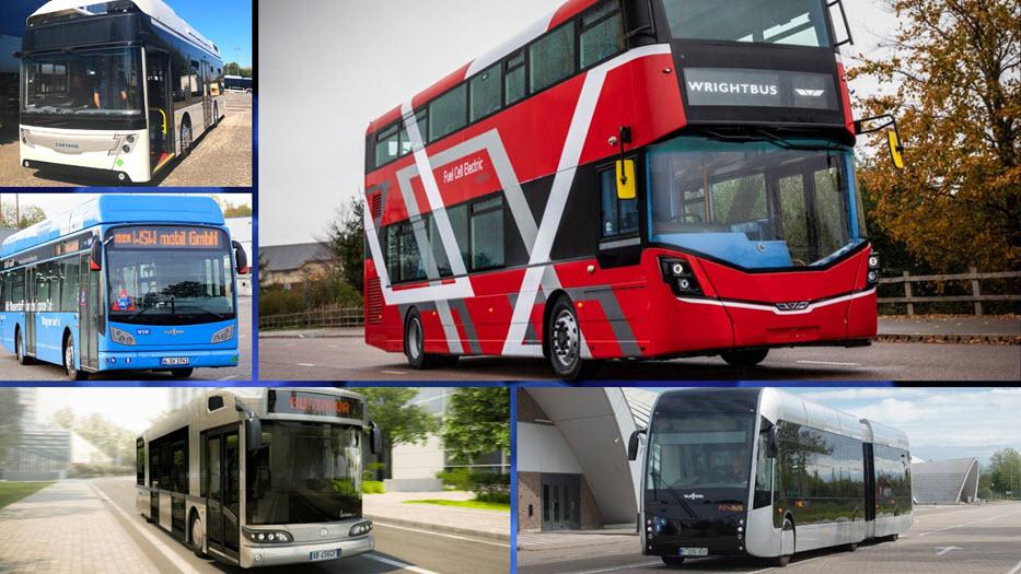 JIVE Buses