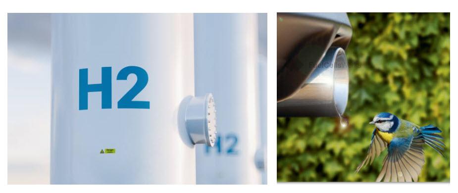 fuelcellsworks, hydrogen, fuel cells