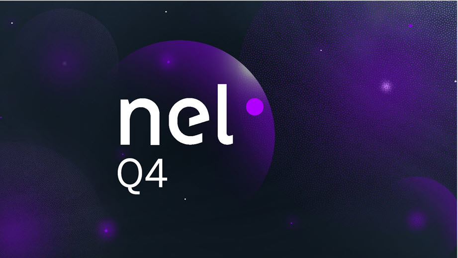 Nel ASA Announces Positive Fourth Quarter 2020 Financial Results