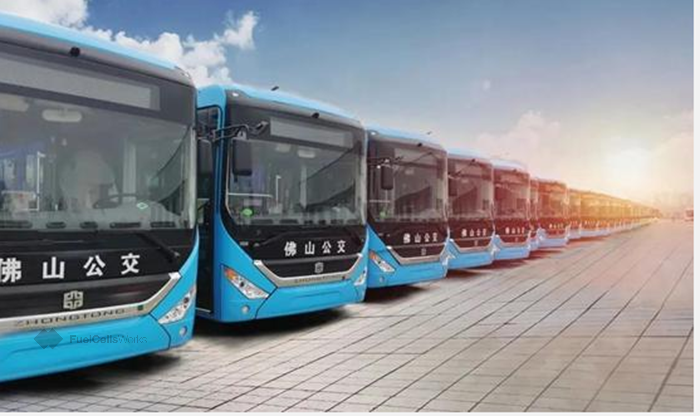 fuelcellsworks, Hydrogen Buses Put into Service in Foshan