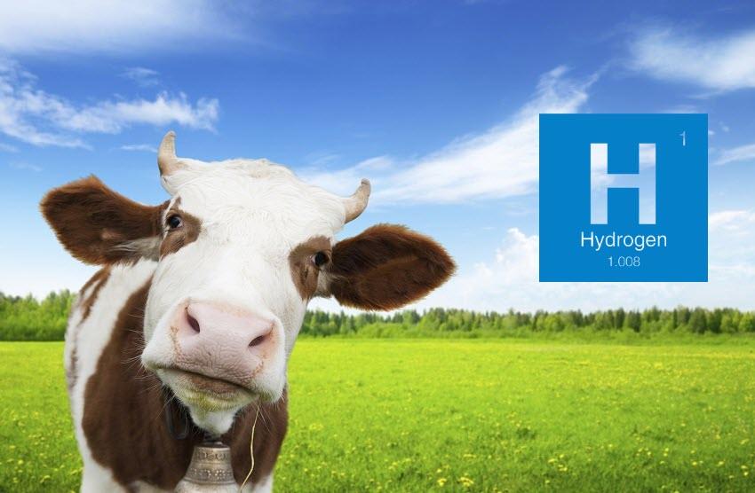 Fuel cells works, hydrogen, Hycel, fuel cells