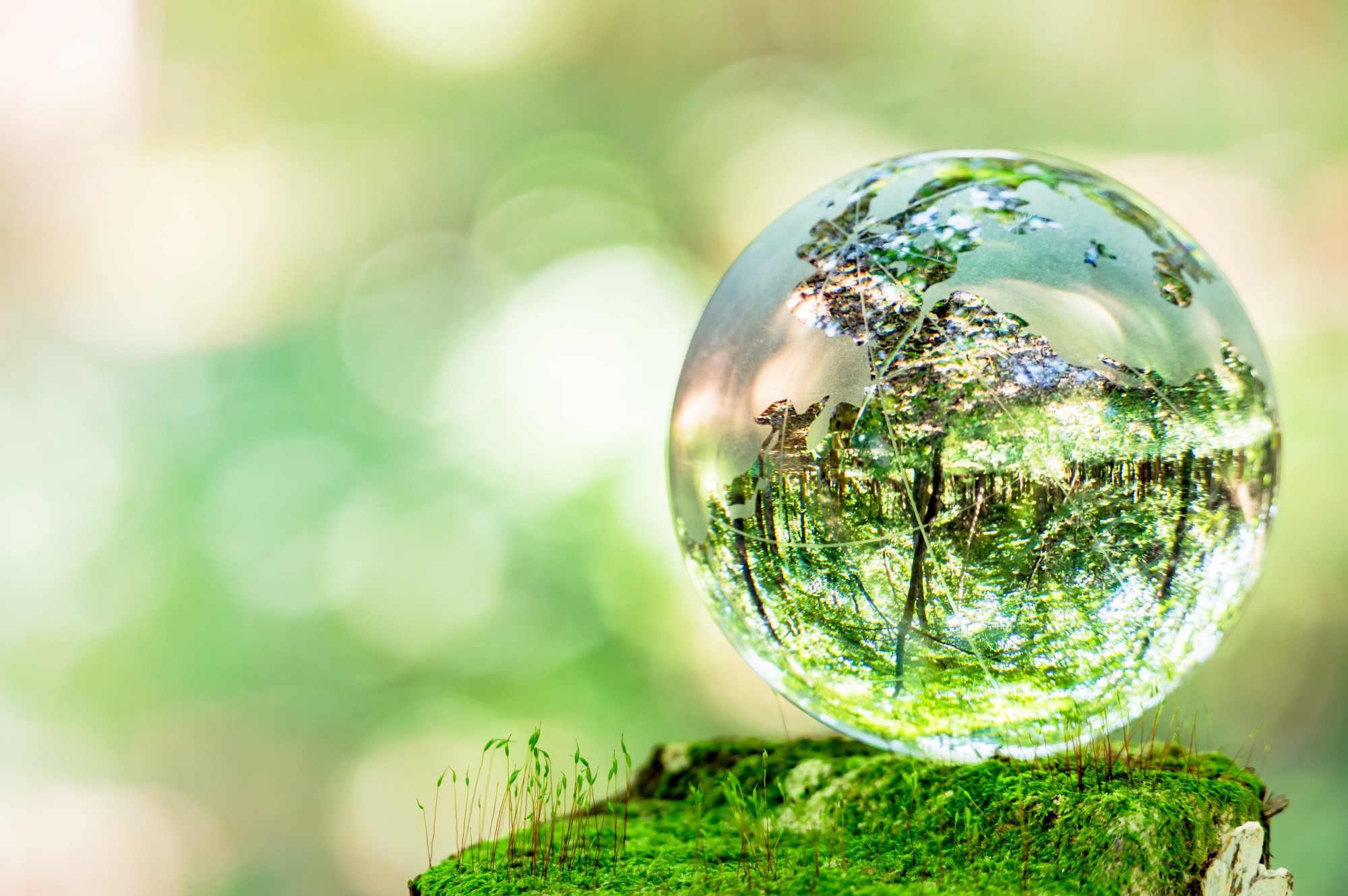 Fuel cells works, hydrogen, hypos, green hydrogen, fuel cells