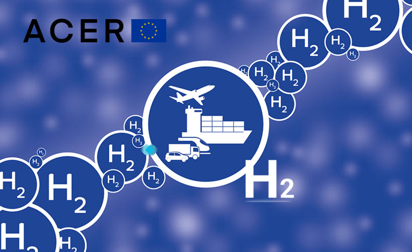 Fuel Cells Works, Repurposing Existing Gas Infrastructure to Pure Hydrogen: ACER Finds Divergent Visions of the Future