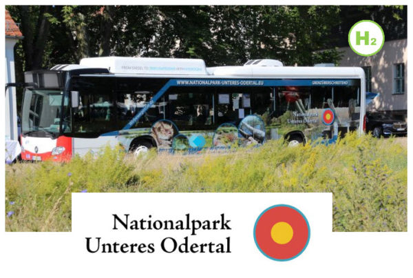 Fuel Cells Works, Hydrogen Buses on the Move in the Lower Oder Valley National Park