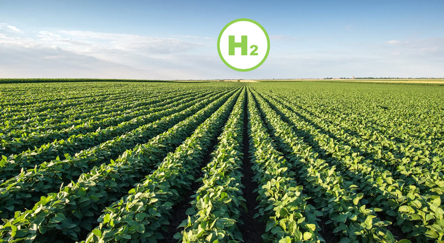 Fuel Cells Works, India: Ari and Sentient Labs Collaborate to Fuel Fuel Cells by Generating Hydrogen From Agri Residue