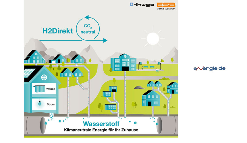 Fuel Cells Works, Project H2Direkt: Future of Gas Distribution Networks - Operation with 100% Hydrogen